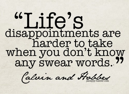 The Wisdom Of Calvin And Hobbes