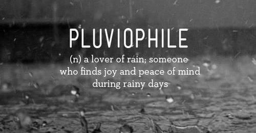 Pluviophile-500x260