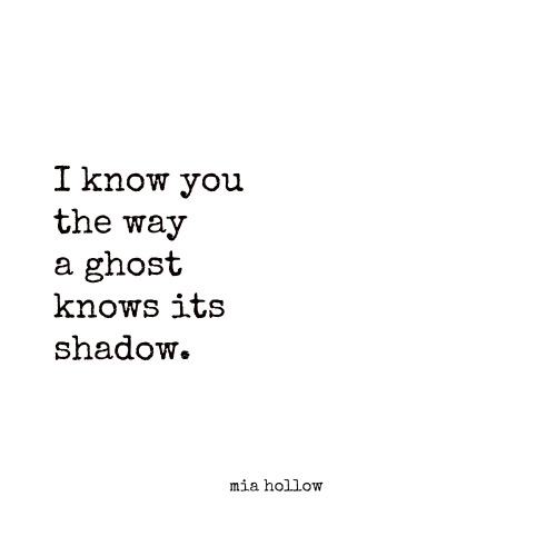 Mia Hollow 1