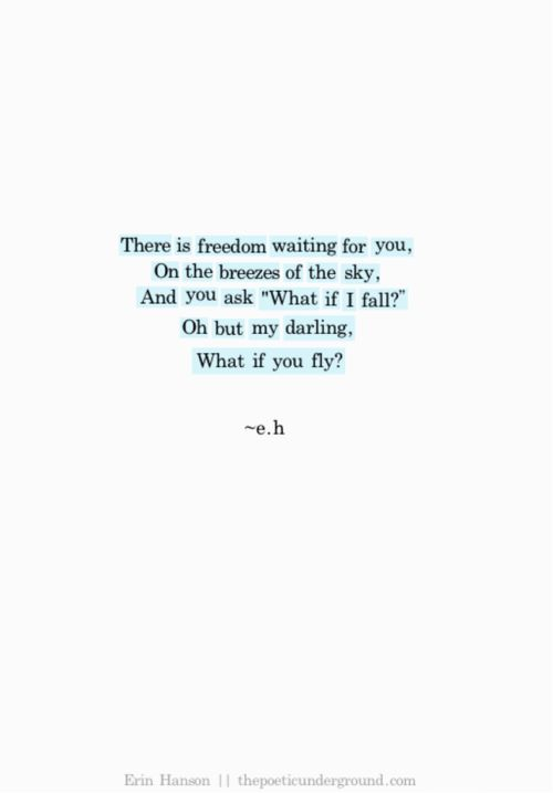 20150911 What if you fly?