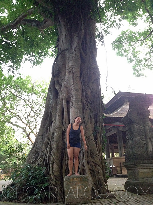 I was just laughing my ass off because I haven't practiced yoga in so long, I can't even pull off the tree pose in front of a tree.