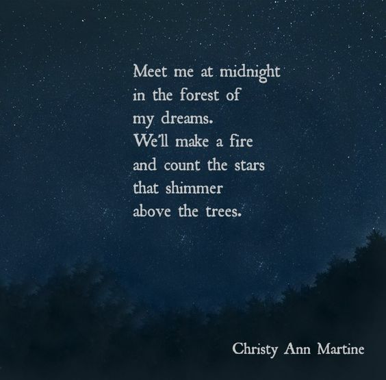 NPM 20160408 Meet me at midnight - Christy Ann Martine