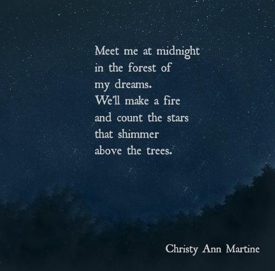 NPM 20160408 Meet me at midnight - Christy Ann Martine